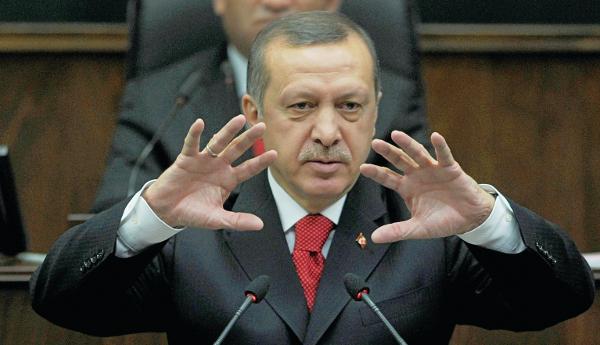 erdogan894