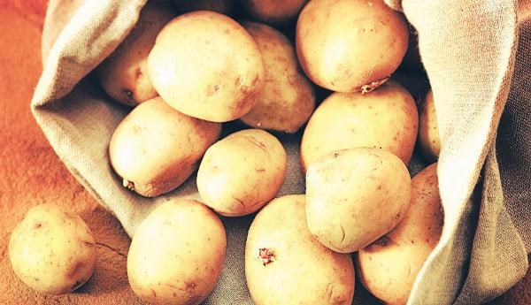 patates853