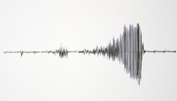 seismograph001