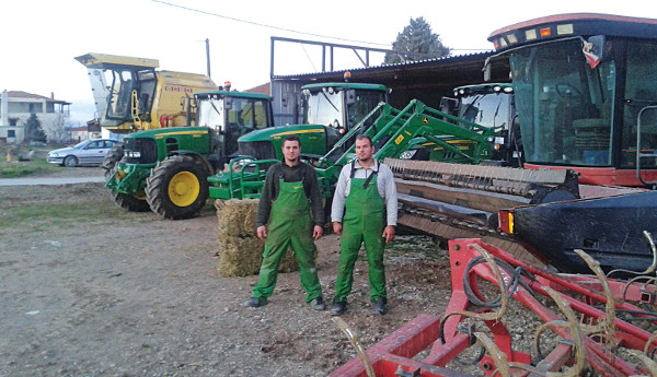 agrotes953