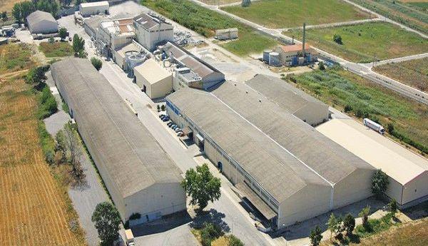 15_f2_factory_new-mel_a